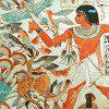 Actualité | Egypte | Histoire | Historyweb  Un rarissime carré de lin funéraire égyptien aux enchères actu histoire historyweb 52 100x100